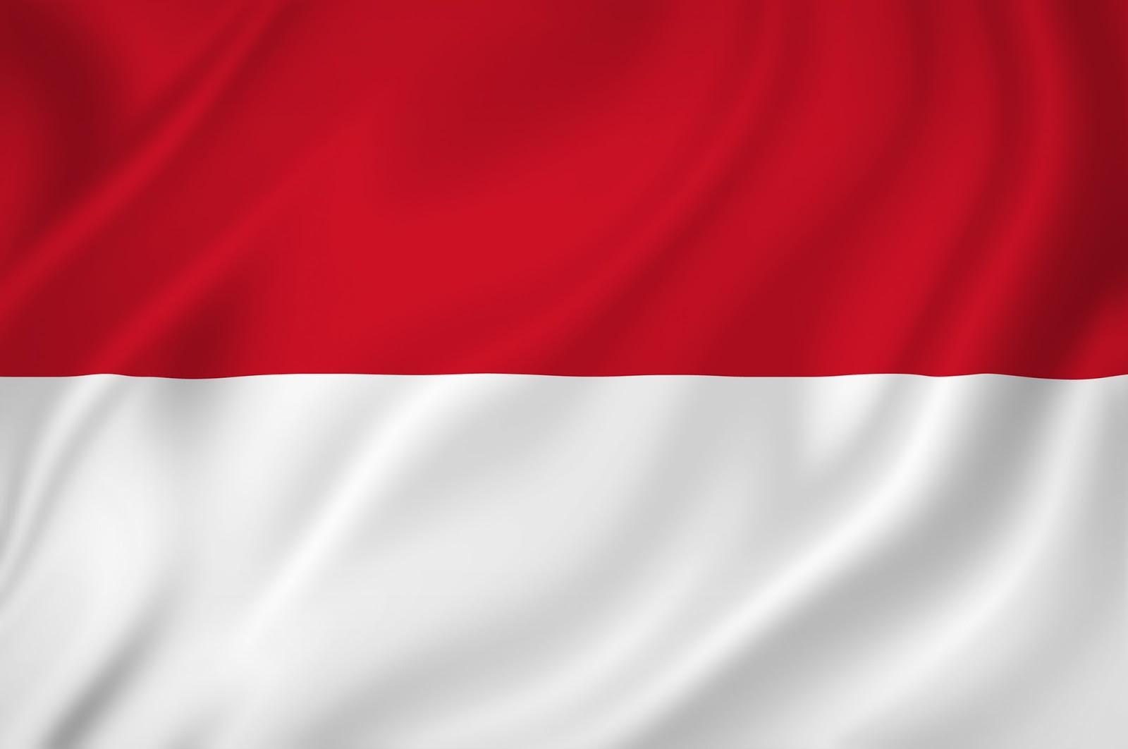 24-246864_bendera-merah-putih-bitmap